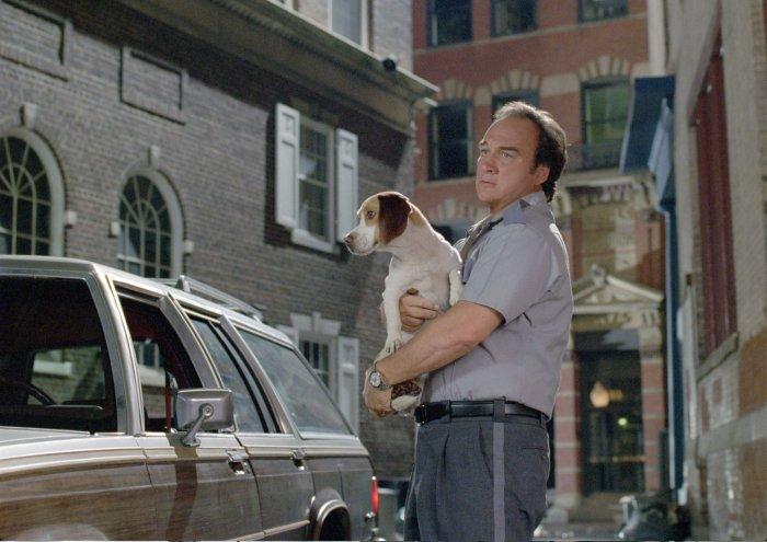 Dan Unger (James Belushi) nimmt den unscheinbaren Beagle mit nach Hause