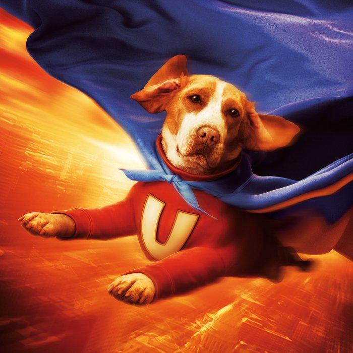 Der Underdog als strahlender Superheld