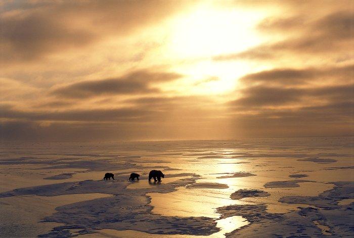 ...am Polarkreis