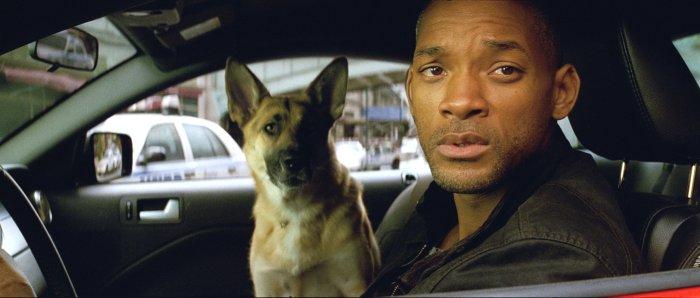 Mensch und Hund machen sich Sorgen
