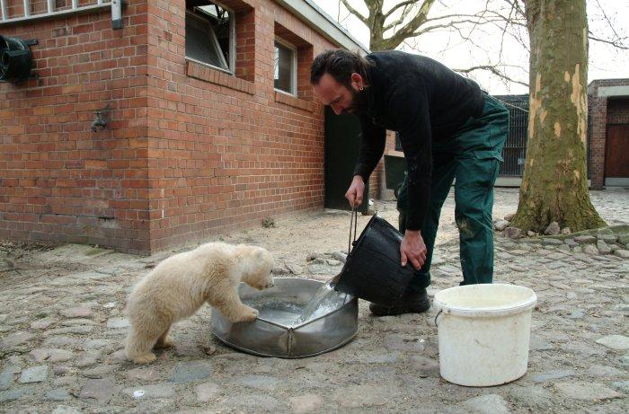 Knut und sein Pfleger Dörflein
