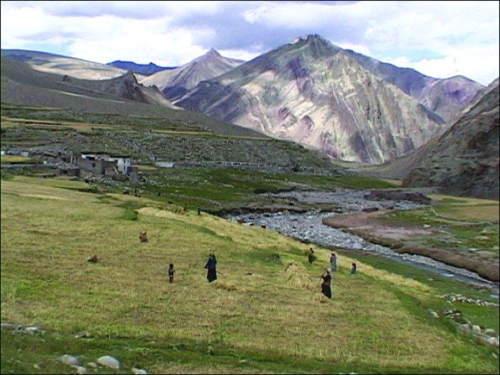 Bauern im Himalaya