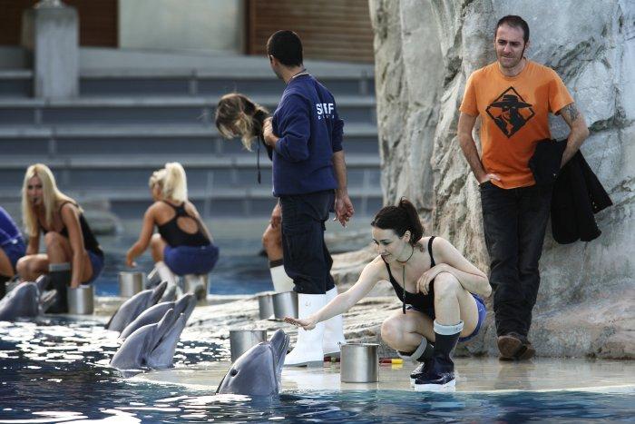 Die Geschwister im Delphinarium