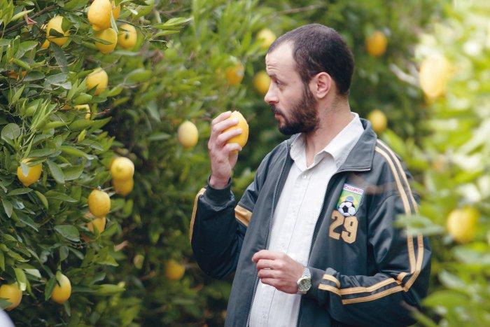 Ziad hat nicht mit Zitronen gehandelt