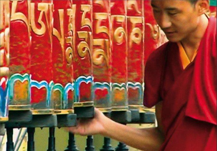 Einer der Mönche in Dharamsala