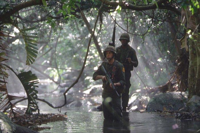 Im Dschungel von Vietnam